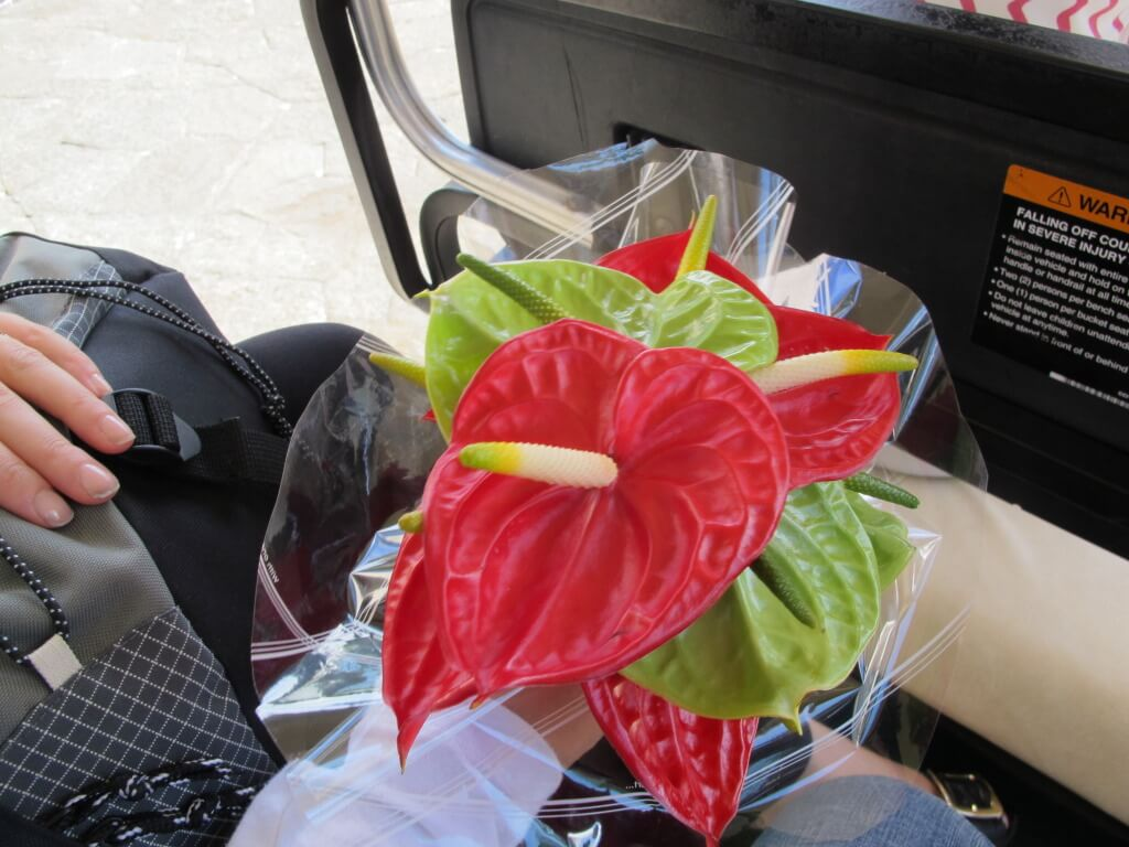 Welcome Flowers at the Four Seasons Mauritius