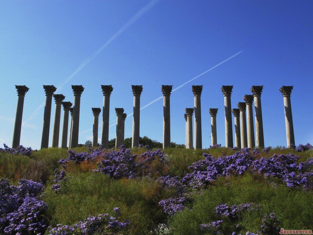 National Arboretum has columns from original National Capitol