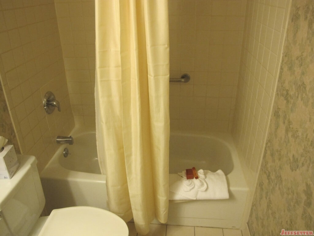 Tub and Shower Area