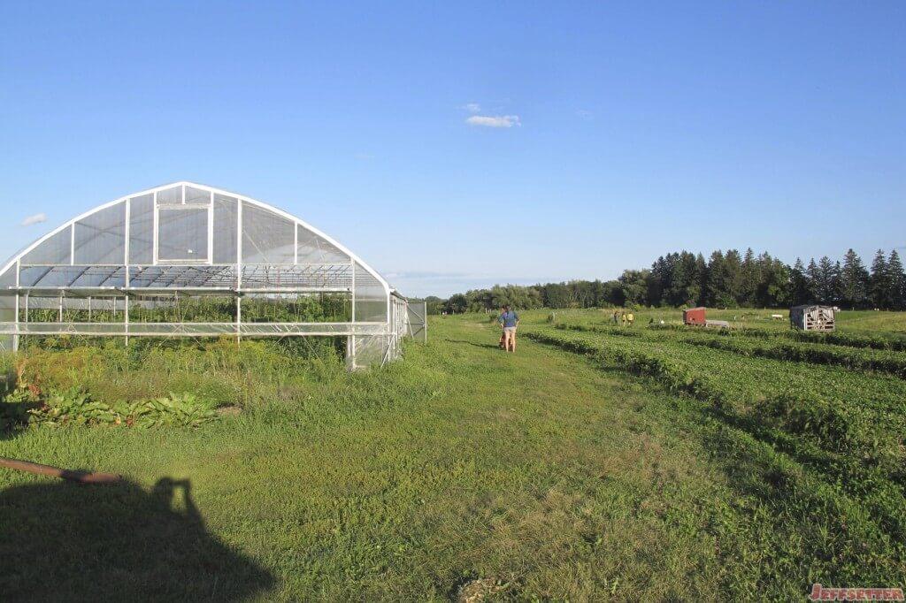 Greenhouse and Farm Area