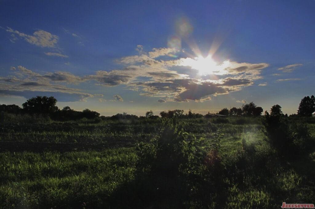 Sun Going Down on the Farm