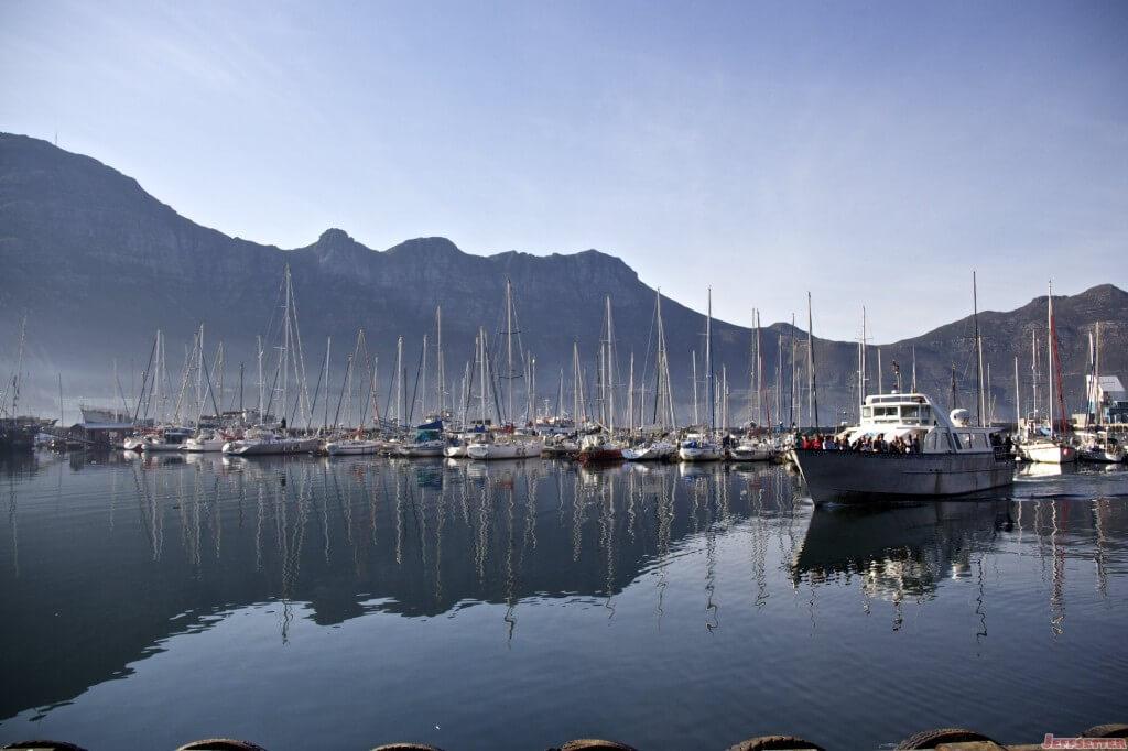 Cape Town 317
