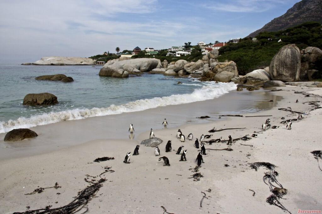 Cape Town 668