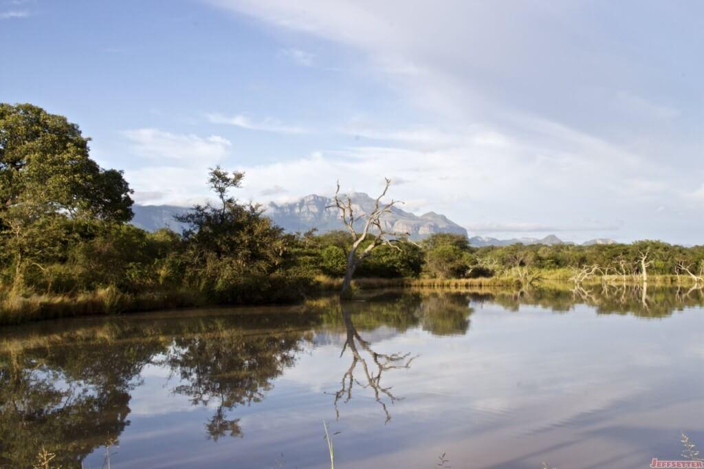Vuyani Safari 148