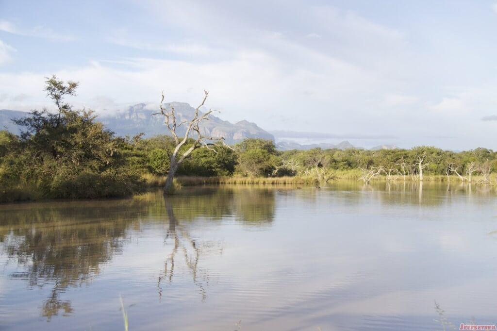 Vuyani Safari 185