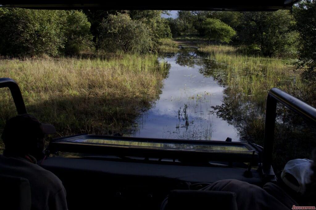 Vuyani Safari 197