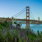 Doing Touristy Stuff in My Own City – Golden Gate Bridge Photos During Spring Flower Bloom
