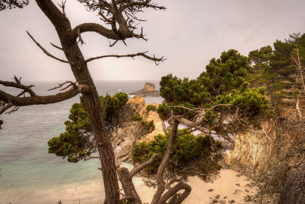 Mendocino Beach Surprise-2