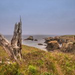 Our Own Private Cliff on the Mendocino Coast – Highway 1 in California