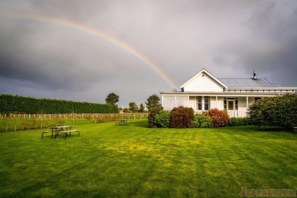 Martinborough Winery-1