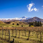 Central Otago Wine Country and Exploring New Zealand: My Week in Travel for September 14