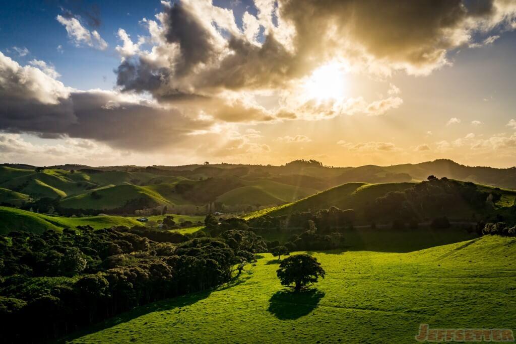 Waiheke Island Landscapes-2
