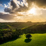New Zealand – Waiheke Island [Wines and Views]