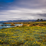 Cliffs and Beaches in Fort Bragg, California