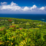 Scenic Overlook on the Road to Hana, Maui, Hawaii