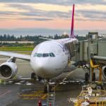 Domestic Flights to Hawaii