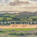 Wineries: Mudbrick Vineyard Waiheke Island