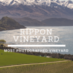 Rippon Vineyard: The World's Most Photographed Vineyard