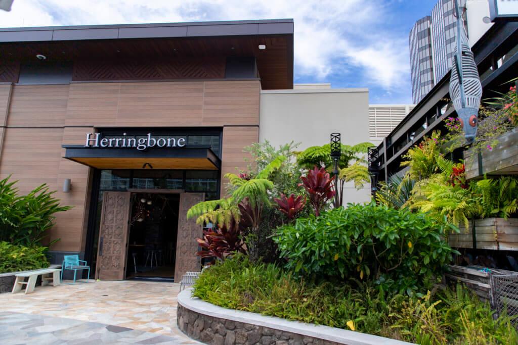 Herringbone Waikiki Brunch