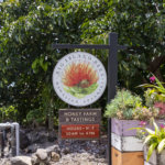 Honey Tastings and More at Big Island Bees