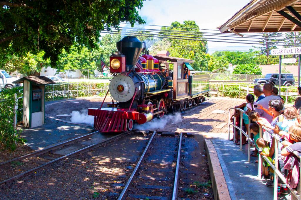The Maui Sugar Cane Train is in Trouble Again
