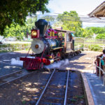 The Maui Sugar Cane Train is in Trouble Again