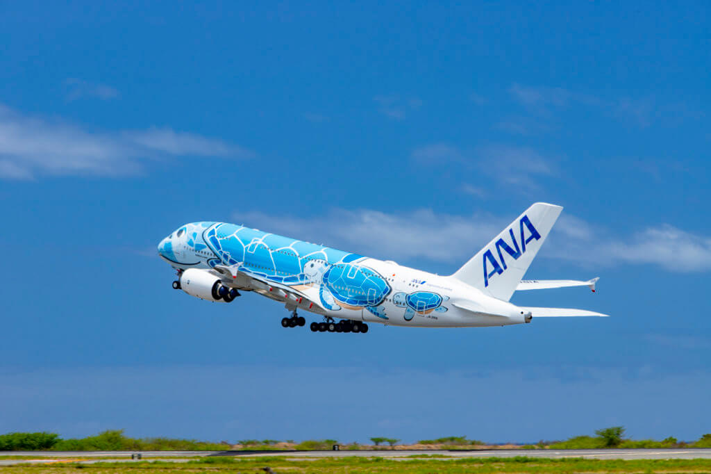 Delivery of the Final Flying Honu is Delayed