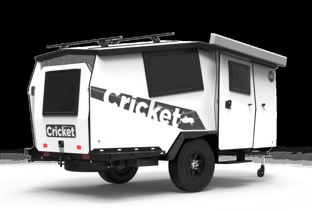 2021 cricket