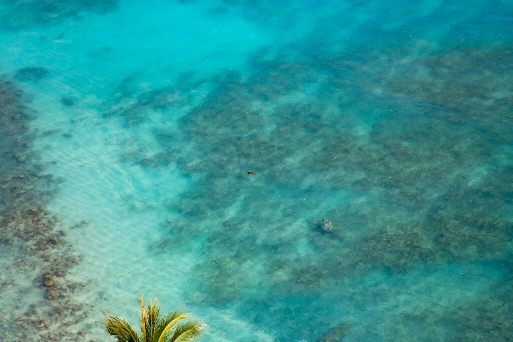 Sheraton Waikiki Oceanfront view