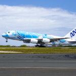 Flying Honus Temporarily Returned to Honolulu